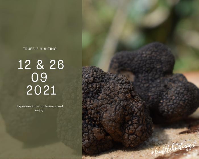Truffle Huntings_September